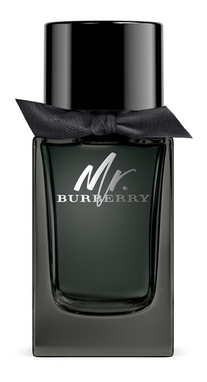 4038273_Mr_Burberry-300