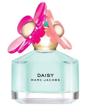 Daisy-Delight_300